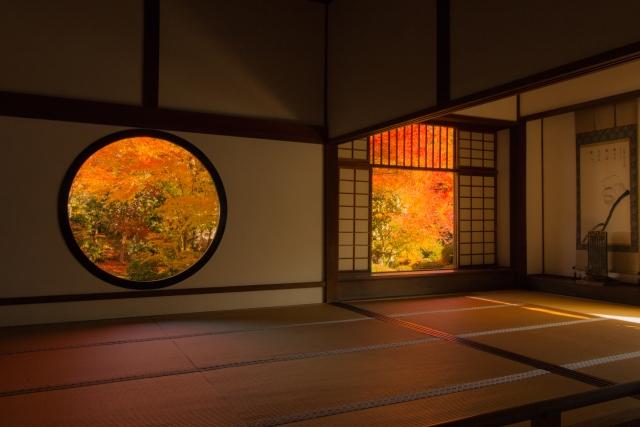 神社で紅葉を見る