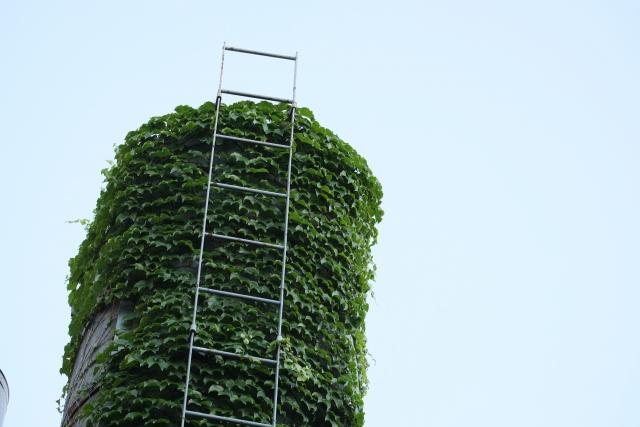 はしごを登るのが怖いと思う