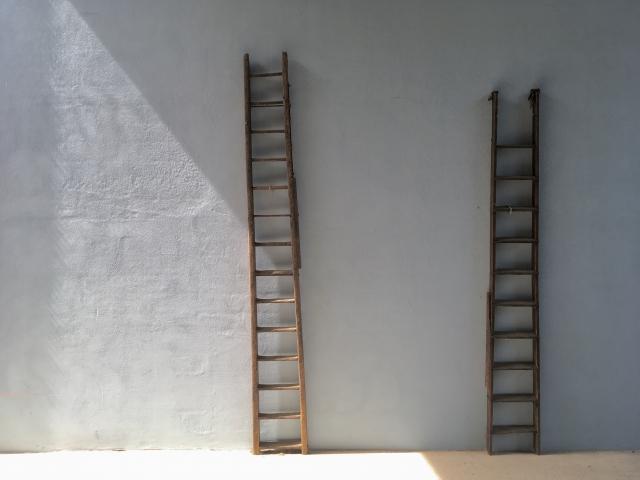 はしごを登る