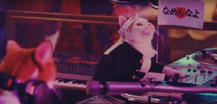 YモバイルCMで1980年のなめ猫!って何?アッシー君やワンレンギャルは?