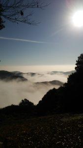 雲海の楼閣