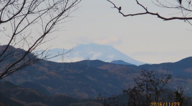 仙元山から東京スカイツリー