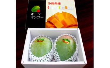 今帰仁村、ふるさと納税は沖縄県産マンゴー!申し込み7000件