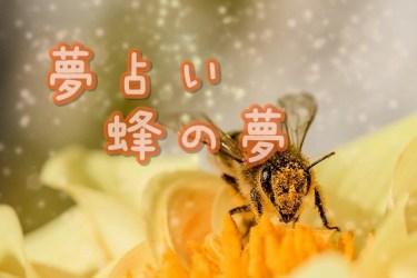 【夢占い】蜂の夢20の意味|刺される・襲われるなど
