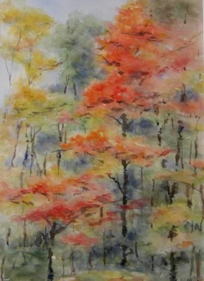 Autumn Colours-4 (15x11)