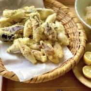 みょうが・茗荷・秋茗荷・天ぷら・香野菜