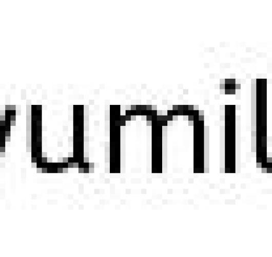 電子申請用紙の入力12