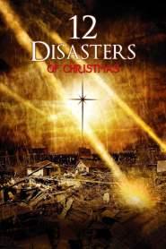 12 วิบัติสิ้นโลก The 12 Disasters of Christmas (2012)