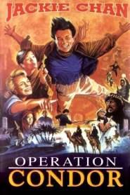 ใหญ่สั่งมาเกิด 2 ตอน อินทรีทะเลทราย Armour of God 2: Operation Condor (1991)