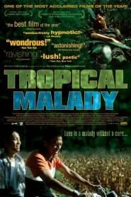 สัตว์ประหลาด Tropical Malady (2004)