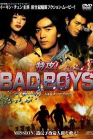 คู่เลว Bad Boy (Bad boy dak gung) (2000)