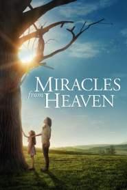 ปาฏิหาริย์แห่งสวรรค์ Miracles from Heaven (2016)