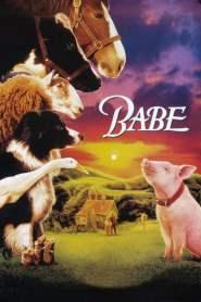 เบ๊บ หมูน้อยหัวใจเทวดา 1 Babe (1995)