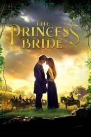 นิทานเจ้าหญิงทะลุตำนาน The Princess Bride (1987)