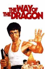 ไอ้หนุ่มซินตึ๊ง บุกกรุงโรม The Way of the Dragon (1972)