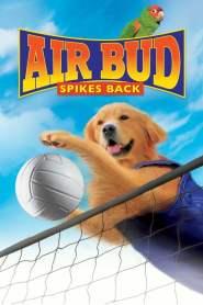 ซุปเปอร์หมา ตบสะท้านคอร์ด Air Bud: Spikes Back (2003)