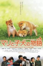 เพื่อนซื่อ… ชื่อ มาริ A Tale of Mari and Three Puppies (2007)