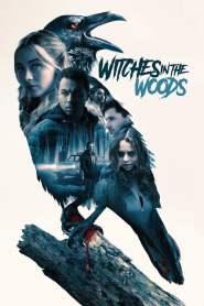 คำสาปแห่งป่าแม่มด Witches in the Woods (2019)