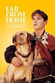 เพื่อนรักแสนรู้ Far from Home: The Adventures of Yellow Dog (1995)