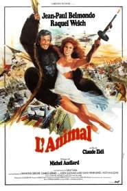 มนุษย์โจ๊ก Stuntwoman (1977)