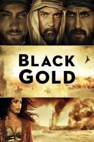 ล่าขุมทองดับตะวัน Black Gold (2011)