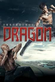 หมัดเหล็กล่าฆาตกร The Invincible Dragon (2019)