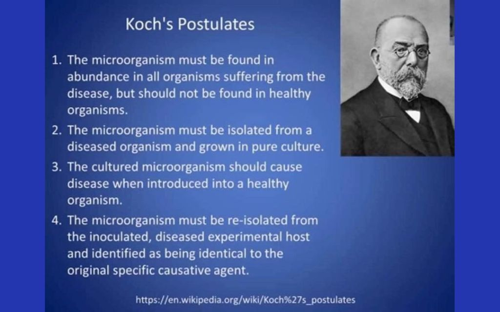 Yummy Doctor - Holistic Living - YumNaturals Emporium - Koch's Postulates