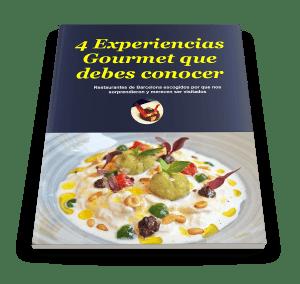 ebook gourmet