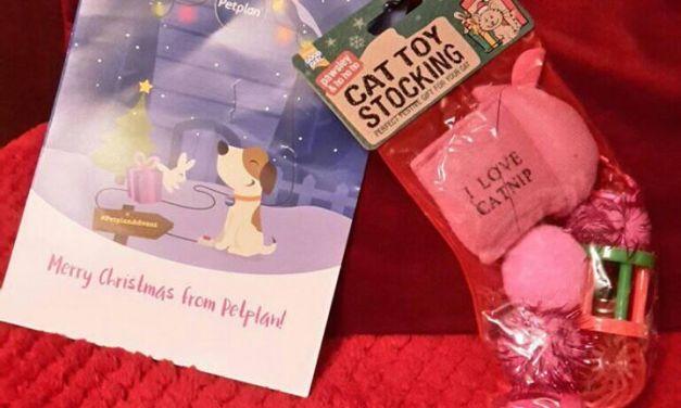 Free Dog Christmas Stocking