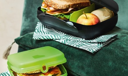 Free Tupperware Lunch Boxes