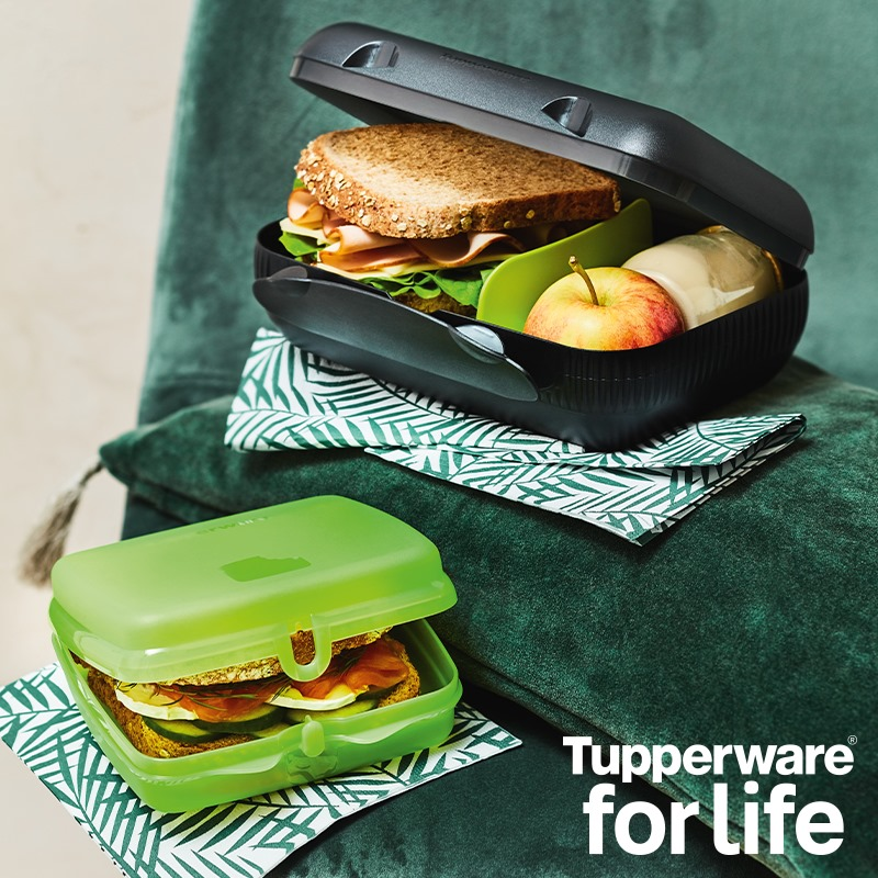 free-tupperware-lunch-boxes