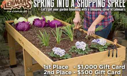 Lehman Shopping Spree Sweepstakes