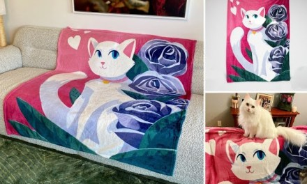 Pretty Kitty Blanket Giveaway