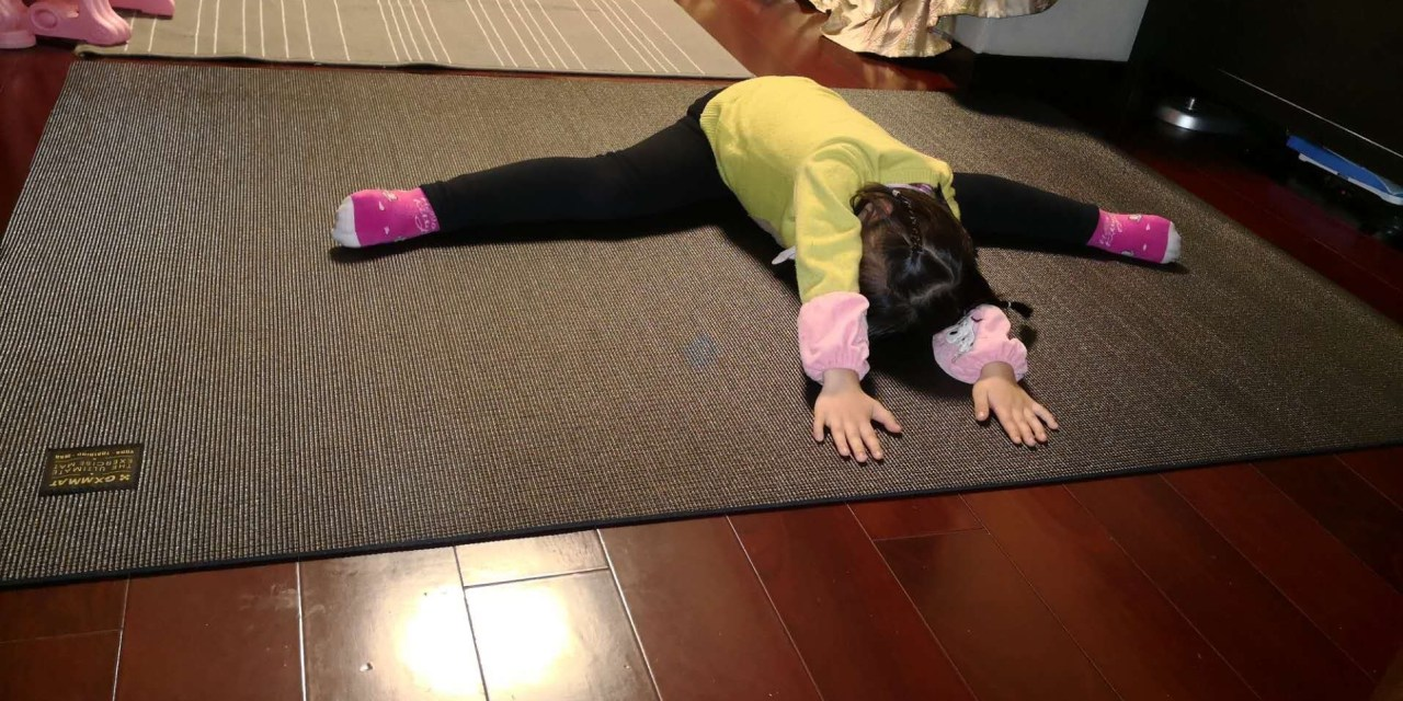 Free Premium Large Exercise Mat and Yoga Mat