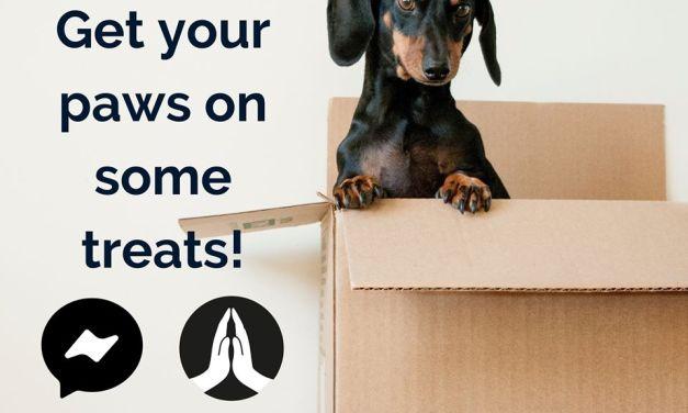 FREE Pet Sample Box
