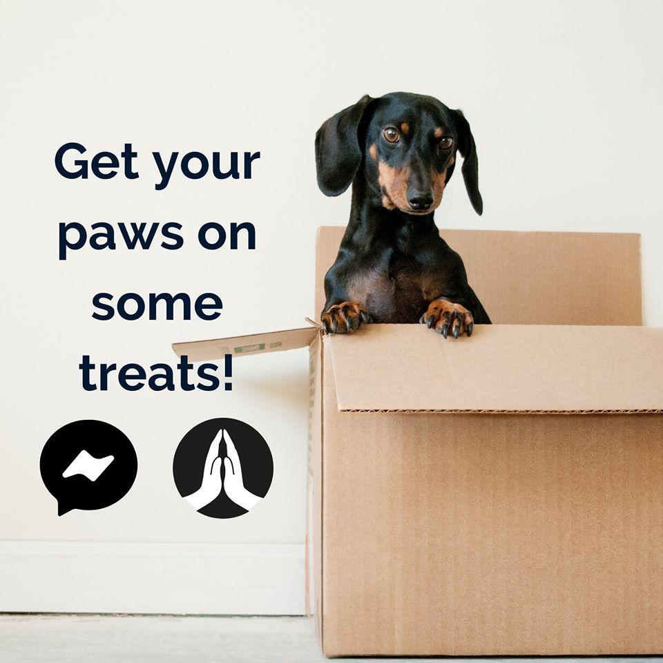 free-pet-sample-box