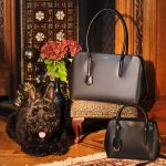 Free Radley Handbag