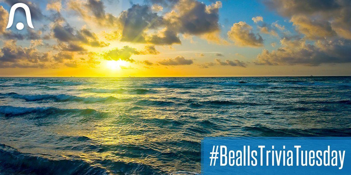 Bealls Gift Card Giveaway