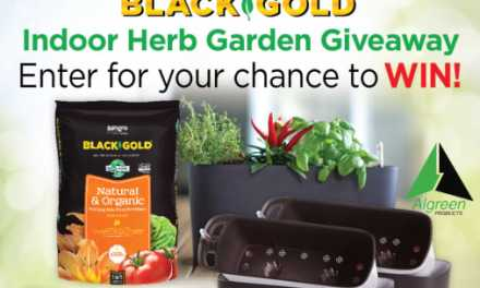 Black Gold Indoor Herb Garden Giveaway