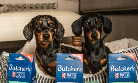 Free Butchers Dog Treats