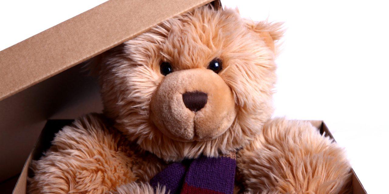 Free Teddy Bear Toy