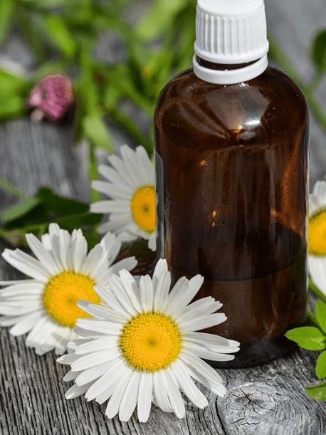 Free Sample Of doTERRA Essential Oils