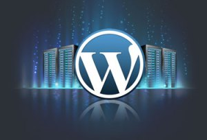 Wordpress hosting servers
