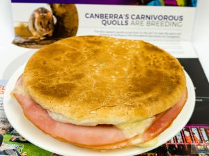 I wonder what Canberra quolls taste like on a toasted ham, cheese, and tomato roll with Dijon mustard Gary Lum