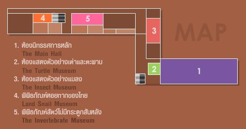(cr.http://museum.stkc.go.th/)