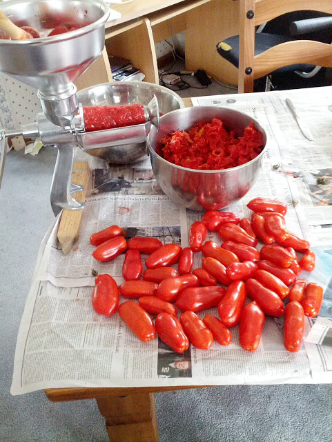 Squeeezo: The Incredible Tomato Processing Machine (1/2)