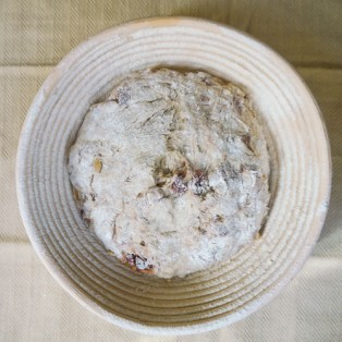 Pine Nut Cherry Harvest Bread