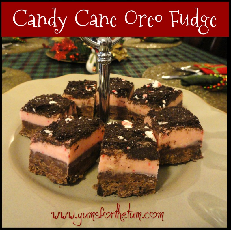 candy cane oreo fudge2
