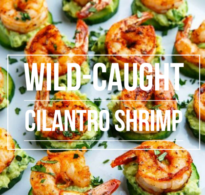 Wild Caught Cilantro Shrimp Served with Creamy Avocado and topped on a  Cucumber Slice