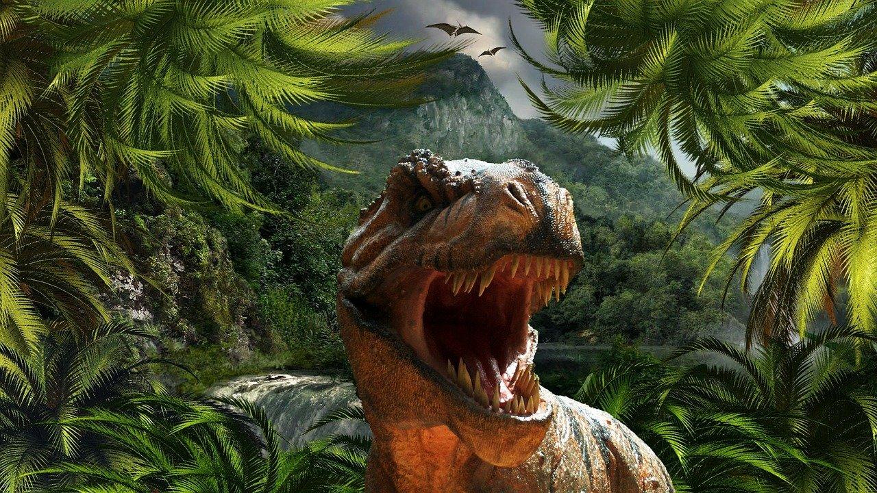 tyrannosaurus rex, dinosaur, reptile